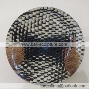 fish Scales disk
